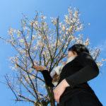 日本の歌百選「早春賦」